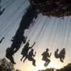 Lovebox Swings