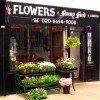 Find fabulous flowers at Fanny Ford of London