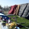 Occupy protestors face eviction after court ruling