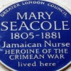 Gove may write Mary Seacole out of history