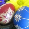 ELL's guide to local Easter holiday actvities for kids