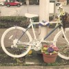 Council threatens to remove singer's 'ghost bike'