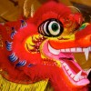 January 30- February 05: Chinese New Year & quiz
