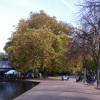 Prestigious Green Flags awarded to outstanding local parks
