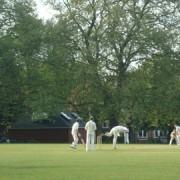 Cricket in London Fields. Picture: AC
