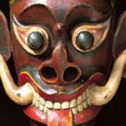 Photo: Horniman Museum