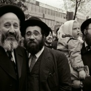 resized_haredim