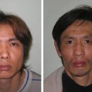 Guo-Ping-Chen-and-Bing-Cheng