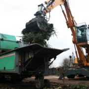 Christmas-Tree-Recycling-Croydon