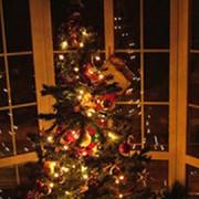 ChristmasBurglaries