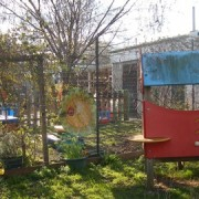 Meadowgate is one of the schools to be closed this summer pic: Meadowgate School