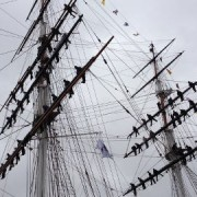 Men and Women Line the Masts of the Cutty Sark