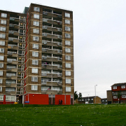 The Fieldway estate. Pic: Nico Hogg