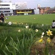 Spring sunshine in Lewisham on the day the borough described as least peaceful place in Britain. Pic: ELL