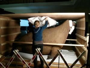The walrus is tucked in tight ready for the journey Pic: Horniman Museum and Gardens
