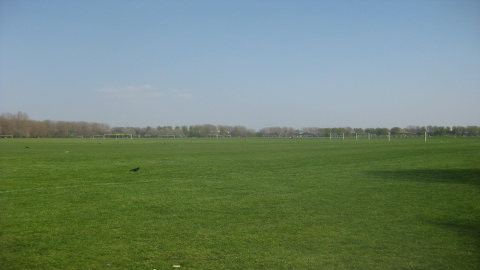 Hackney Marshes pic: Matt from London