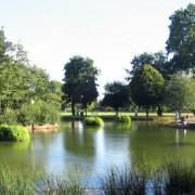 Victoria Park. Pic: Fin Fahey.