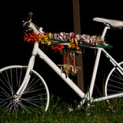 Cycling deaths last year led to protests Pic: Sam Catanzaro