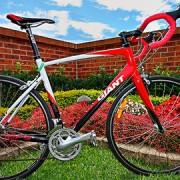 cyclist_vox_pop_lead_gimped