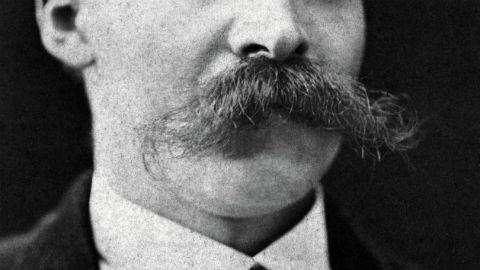 Nietzsche's moustache Pic: Mr F Hartmann