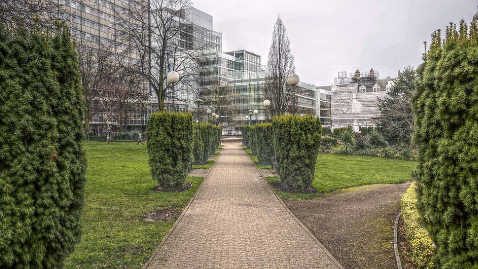 Queen's Gardens Pic: David Pinkney