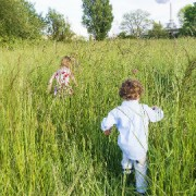 Children play in a meadow Pic: Rose Anna Dana