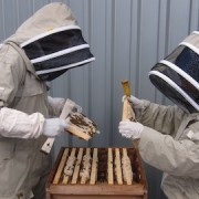 Khalil and Salma inspecting a hive. Pic: Jessica Chia