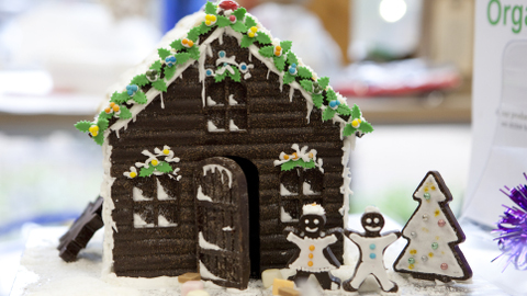 Christmas gingerbread house Pic: Ludo des Cognets and Horniman Museum and Gardens