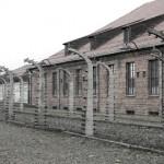 Auschwitz. Pic: Anna Senkara