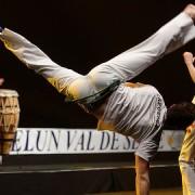 Capoeira demonstration. Pic: Marie-Lan Nguyen