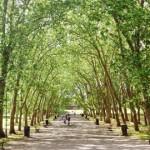 Crystal Palace park. Pic: Wikimedia