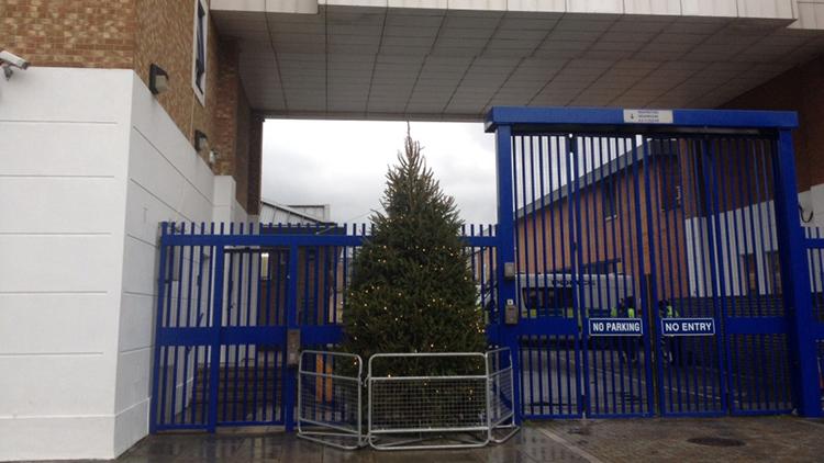 'Kettled' Christmas tree. Pic: Amanda Grace Johnson