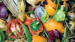 Lewisham council is urging residents to use their food waste bins