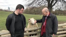 Mayor Biggs with Louie Legon and one of the sheep at Mudchute farm.