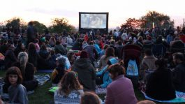 Last year screening on Telegraph Hill, New Cross and Deptford Free Film Festival