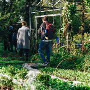 People standing near a greenhouse